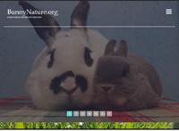 Bunnynature